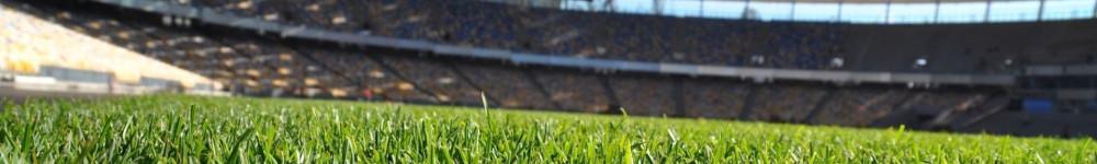 cropped-campo-di-calcio-stadio-159499